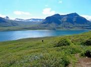 eastfjords (4)