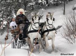 horseride winter